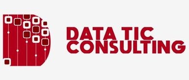 Datatic Consulting